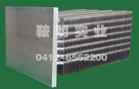 Flameproof heat pipe radiator